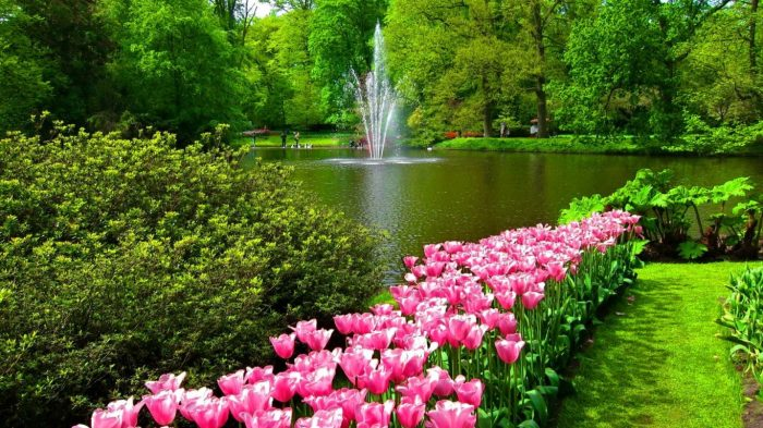 lake-flowers-walk-greenery-fountain-beautiful-keukenhof-pretty-garden-grass-tulips-forest-lovely-park-nice-animated-image-1366x768