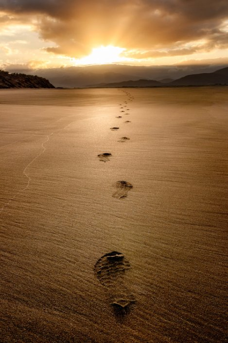 Footprints+in+the+sand-squarespace (1)